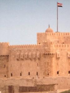 Case 9 - 2 (Egypt)